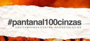 Campanha Pantanal 100 cinzas